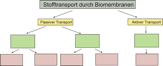 Losung Transport.png