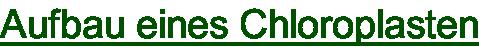 Aufbau eines Chloroplasten