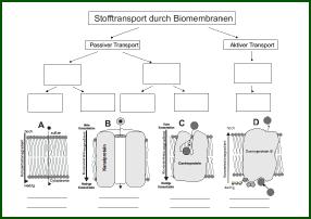 Stofftrans.pdf