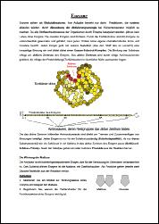 AB Enzyme.pdf